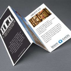 Trifold Brochure for Lawganizer CA
